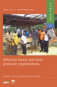 Effective Forest and Farm Producer Organizations
